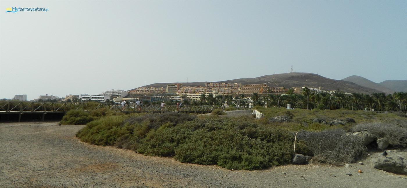 Morro Jable platforma
