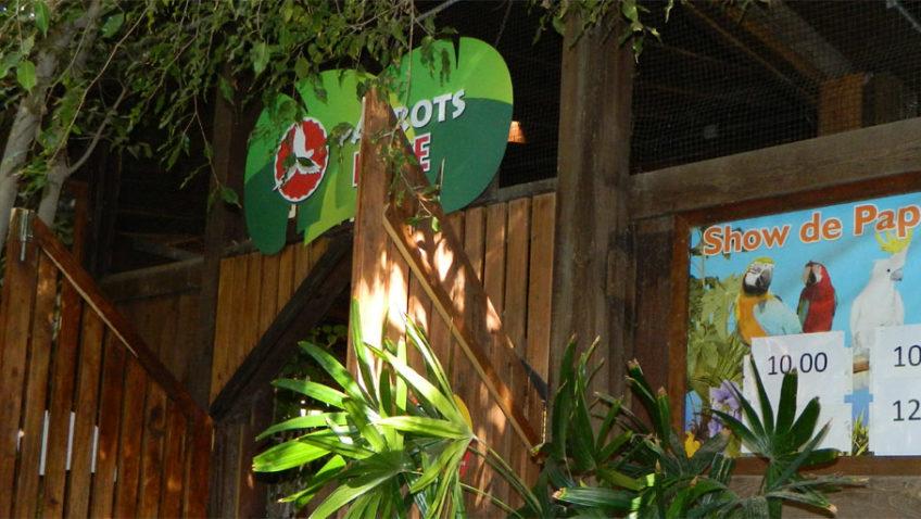 Pokaz Papug - Oasis Park