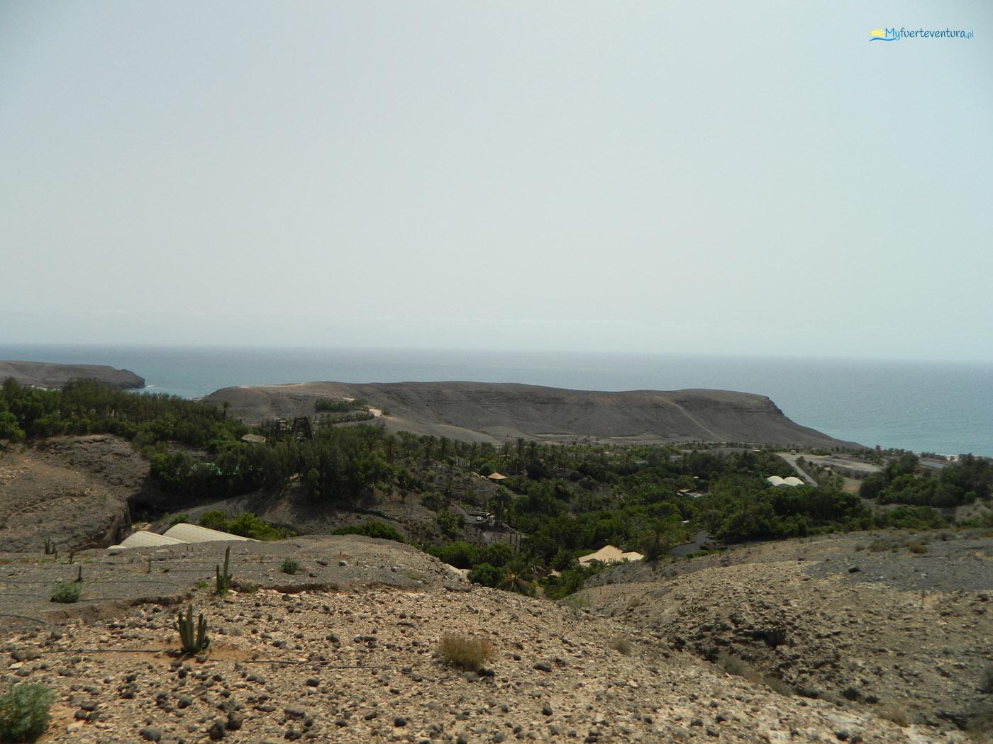 Oasis Park Fuerteventura - punkt widokowy